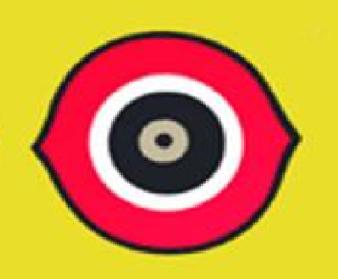 Bird Deterent Eye device Image